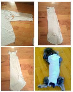 Dog Onesie From A Shirt Sleeve | DopamineJunkie.org