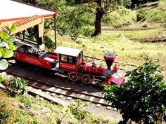 Monteverde Cloudforest Train , One of the best one day tours in Monteverde