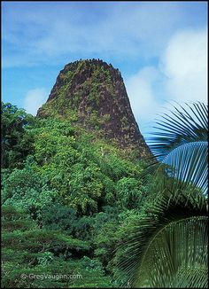 Pwusehn Malek, Pohnpei--Also known as Chickenshit Mountain