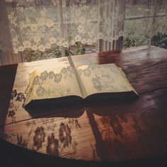 Light and lace shadow Wooden Screen Door, Cottage Windows, Shadow Art, Minimalist Room, Lace Curtains, Cozy Cottage, Ad Hoc, I Love Books, Light And Shadow