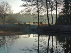 Down by the river by Buble Beautiful Landscapes, Deviantart, River, Traditional, Artist, Photography, Outdoor, Outdoors, Photograph