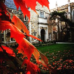 The stunning colors of a #Michigan Autumn framing the lawyersclub.