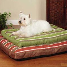Red Stripe Beach House Dog Bed