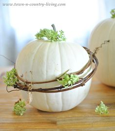 Wrap white pumpkins with grapevine wreaths for a decorative Fall look.