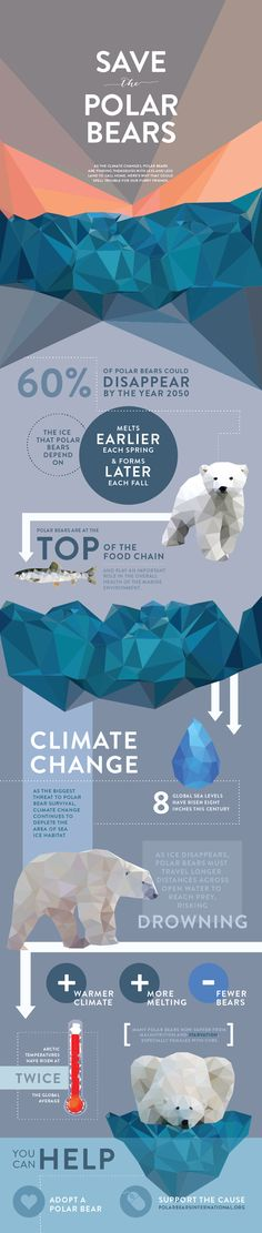 """""""Save The Animals"""" Infographic Series on Behance"""