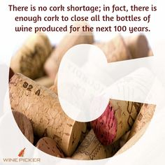 Did You Know?  #fact #wine #oak #tree #winecork #winestopper #wineaddict #tuesdaytip #corks #winemoment #tradition #goodwine #winevariety #winebottle #winepicker