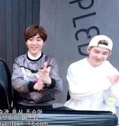 seventeen reaction | Tumblr | Seungkwan and Woozi