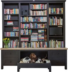 """Can you tell we love our dogs? I mean, how could we not - they're the best. Pictured first is Slim Shady, Natalie and """"Puppy"""". All of them are rescues and they love testing out our dog beds.   Pictured is the Njabulo Book shelf, designed to give your dogs a space in your house. Free Standing Kitchen Units, Swedish Style, Tv Cabinets, Luxury Living, Home Decor Inspiration, Modern Bathroom, Bookshelves, Slim Shady, Interiors"""