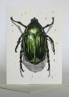Green June Beetle - woodcut 2007 - Jonathon Poliszuk, U. Woodcut Art, Linocut Prints, Art Prints, Illustration Art, Illustrations, 1 Tattoo, Insect Art, A Level Art, Gravure