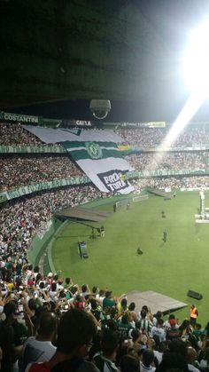 #Sem categoria: Homenagem à Chapecoense no estádio Couto Pereira - http://spagora.com.br/homenagem-chapecoense-no-estadio-couto-pereira/