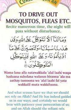 Duaa Islam, Islam Hadith, Islam Quran, Quran Urdu, Allah Islam, Muslim Love Quotes, Islamic Love Quotes, Religious Quotes, Prayer Verses