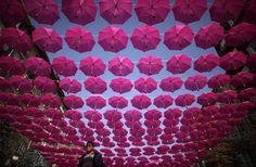Gli ombrelli volanti di Sofia