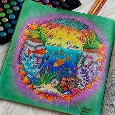 Instagram media colorindolivrostop - Maravilhoso! Use #colorindolivrostop #EzRepost @fernanda_ssenna with @ezrepostapp  Um dos antigos, primeiro usando os incriveis prismacolor :) #johannabasford #johanna_basford  #inspiracaojardimsecreto #lostocean #esrarengizbahçe  #esrarengizbahce #reinoanimaltop #jardimcolorido #jardimsecreto #editorasextante  #mycreativeescape #enchantedforest #florestaencantada#coloring_book #coloring_secrets #jardimdascores #livros_coloridos #colorindolivrostop…