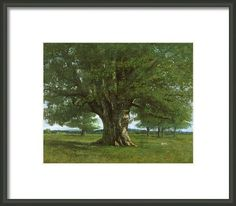 The Oak Of Flagey Framed Print By Gustave Courbet