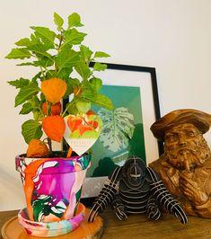 #KeepThemGreen #etsy #makers #smallbusiness #handmade #plantpot #plantpots #cactus #houseplants #houseplantsofinstagram #ilovecacti #instagood #picoftheday #pink #monday #weekendover #houseplantclub #cactusparty #cactusgram #cactusfamily #instaplants #instagarden #succulent #plantaddict #livingwithplants #plantlove #cacti #crazyplantlady #tooting #london Big Plants, Unique Plants, Potted Plants, Cacti, Cactus Plants, Plant Pots, Toot, Instagram Shop, Planting Succulents