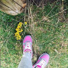 http://www.lamatrushka.com #vlogger #vlog #LaMatrushka #blog #blogger #nice #niceday #LaMarquesa #flores #flowers