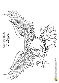 Coloriage animaux oiseaux aigle 03 bordado eagle - Dessin de aigle ...