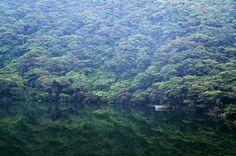 Miyakejima island Tairoike pond
