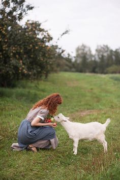 Feed Apple's To Pet Goat