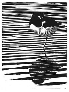 Printmaking Image detail for -... Rose - Wildlife Artist - Bird Illustrator - Linocuts: Oystercatcher