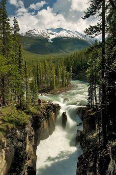 Sunwapta Falls in Jasper is één van de vele watervallen in dit gebied.