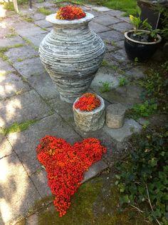 Skiferkrukke og rognebær Vase, Home Decor, Homemade Home Decor, Flower Vases, Jars, Decoration Home, Vases, Interior Decorating, Jar