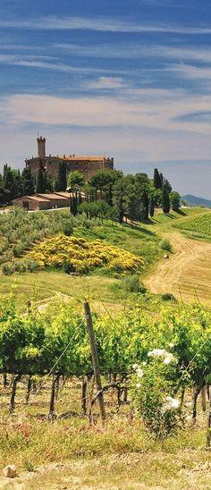 Castello Banfi winery, Montalcino, Siena, Toscana, Italy #ItalyVacation