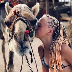 Annie, Camel, Hair Styles, Animals, Beauty, Google, Image, Animais, Beleza