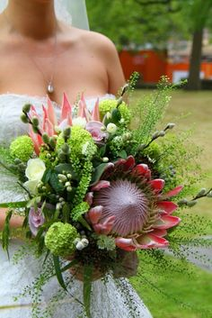 The Totally Spectacular Wedding Bouquet of Proteas and Green Viburnum Opulus Pink Blue Weddings, Blue Wedding Flowers, Green Wedding, Wedding Day, Viburnum Opulus, Bridal Bouquets, Flower Designs, Floral Design, Floral Wreath
