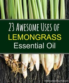 23 Awesome Uses for Lemongrass Essential Oil - Backdoor Survival