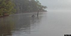 a man traveling in Windermere, England captured what appears to be Nessie herself rising from the waters some 300 miles from her mythical Scottish home in Loch Ness.