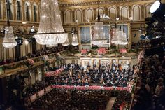Wiener Philharmoniker, Neujahrskonzert, Terry Linke