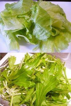 簡単!ほぼ真空で野菜を新鮮保存!! Veggie Recipes, Salad Recipes, Preserving Food, Japanese Food, Lettuce, Preserves, Side Dishes, Food And Drink, Favorite Recipes