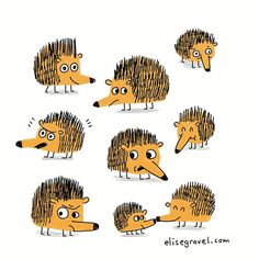 Hedgehog therapy! I was feeling a bit down and now I'm better. Try it, it works. #illustration #doodleoftheday #hedgehog