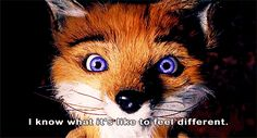 That they can relate to you. | 13 Things The Fox Says