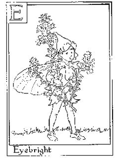 flower fairy coloring pages coloring sheets fairies Flower