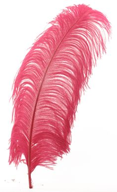 American Duchess: V277: Working With Ostrich Feathers: Plumes, Drabs, and Spads