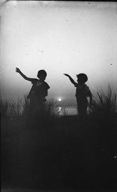 Fireflies, Anonymous.