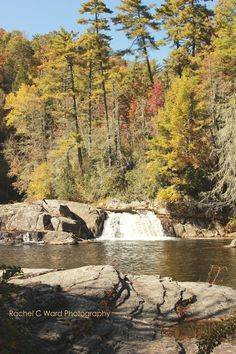 Fall Foliage @ Linville Falls NC   Rachel C Ward Photography rachelcwardphotography@gmail.com
