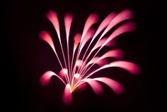 Long Exposure Firework - David Johnson