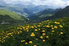italy mountains - Google Search