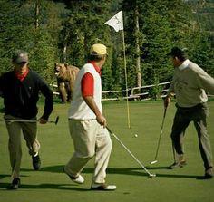 Canadian Golfers