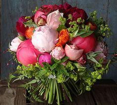 LINCOLNSHIRE Catkin Flowers LN6 4RU Doddington
