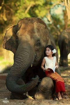 An unnamed elephant that crashed through a home in a small village in West Bengal India turned out to be the rescuer of a young child crying in her bed. Read this amazing tale of rescue that hallmarks the enigma and essence of the majestic elephant. Animals For Kids, Animals And Pets, Baby Animals, Funny Animals, Cute Animals, Beautiful Creatures, Animals Beautiful, Cute Kids, Cute Babies