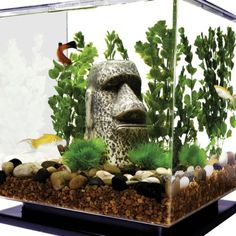 Fish Aquarium Lighting Systems