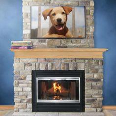 Stiletto Zero Clearance Fireplace Door | Fireplace doors, Zero ...