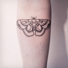 TINY SIMPLE MOTH. ✣ CHECK OUT MY STUDIO @vadersdye ✣