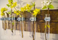 Spring Door Entrance DIY Hanging Test Tube Wall Planter from Hearts and Sharts Hanging Wall Vase, Diy Hanging, Wall Vases, Bud Vases, Flower Vases, Flower Arrangements, Diy Flower, Flower Wall, Test Tube Crafts