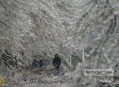 Photo Gallery: Lexington Ice Storm 2003