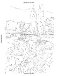 Flower Gardens to Paint or Color Dover Art Coloring Book: Amazon.de: Dot Barlowe: Fremdsprachige Bücher